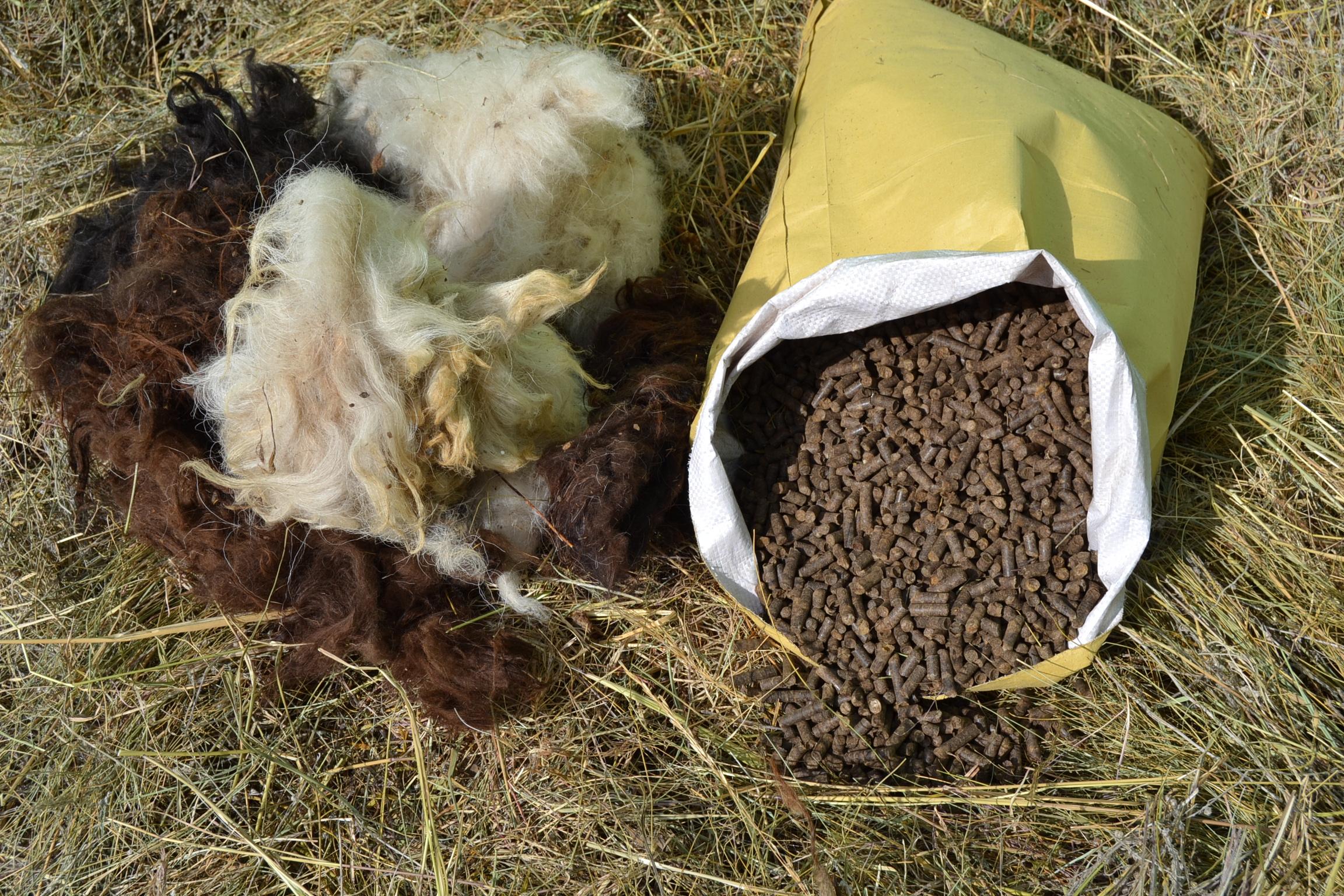 Düngepellets aus 100% Schafwolle
